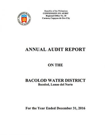 Annual Audit Report Cy 2016